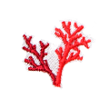 7.CORAL
